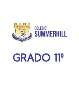 P. Summerhill School Grado 11º